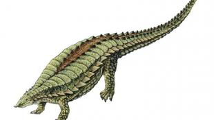 Három állat keveréke az ős-szörny