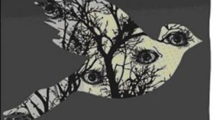 A galamb misztériuma