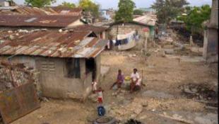 Rekordösszeg Haitiért