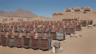 Mozi a sivatag közepén