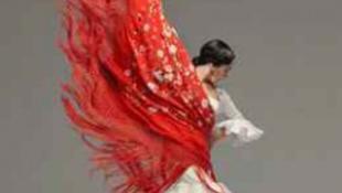 Flamenco, vérrel