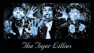 A Tigrincs Lillik újra Budapesten