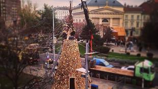 Így lesz a tűzifából karácsonyfa