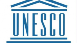 Magyarország a többnyelvűségért lobbizik az ENSZ-ben
