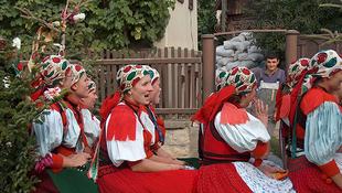 A magyar folk Washingtonba utazik