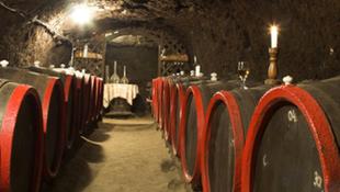 Bográcsgulyás finom borokkal
