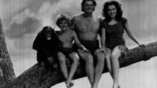 Tisztázzák Tarzan szerepét a világtörténelemben