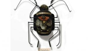 Új fajokat teremtett a bogaras művész