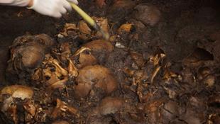 Koponyák kerültek elő egy azték templomból