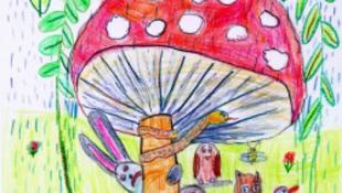 Iskolai ámokfutás és hitelválság az AKKU-ban