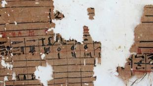 Megtalálták a legrégebbi papiruszokat