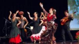 Flamenco Sevillából