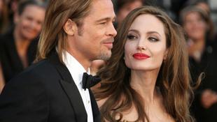 Dél-Afrikába költözik Brad Pitt és Angelina Jolie