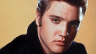 15000 ember már tudja, hol legyen az Elvis tér