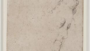 Elfeledett Rubens-grafika a szekrényből