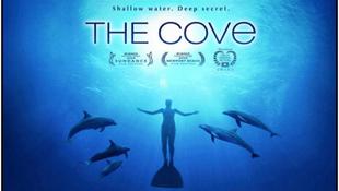 Delfinekre vadásznak a hollywoodi hírességek