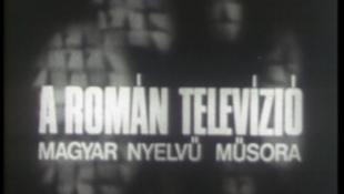 Interneten a román köztévé magyar műsorai