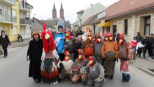 Kakasütés: a több száz éves hagyomány