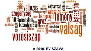 Mi 2010 legjellemzőbb szava?