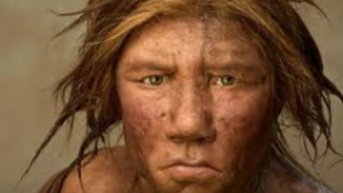 Nem csak a neandervölgyivel szűrtük össze a levet