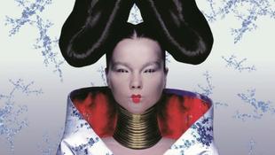 Csodás titkok derültek ki Björk életéről