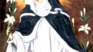Katolikus életerő