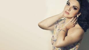 Kirúgták a homofób énekesnőt