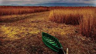 Visszatért a víz a halott nemzeti parkba