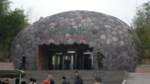 Kínában van a világ legnagyobb dinoszaurusz gyűjteménye