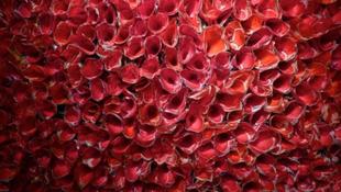 Virágszirom-mezők a dohányzóasztalokhoz