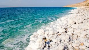 Haldoklik a Holt-tenger