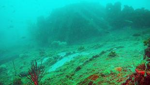 Világháborús tengeralattjárót találtak