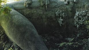Kolosszus pihent meg a tó partján