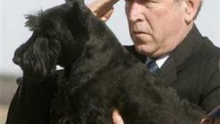 Elnöki ebek tárlata