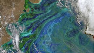 Lenyűgöző jelenség az Atlanti-óceánon