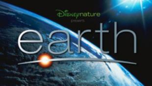 Megmenti az esőerdőket a Disney