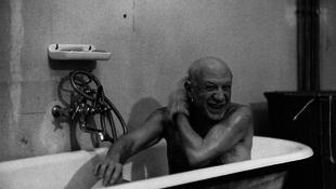 Picasso érkezett a faxon
