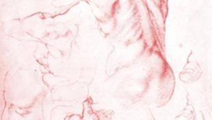 Michelangelo szobra repülni is tud