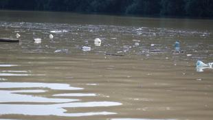 Törmelékszigetek úsznak a Tiszán