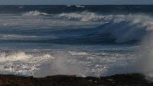 Potyautasokat sodort partra a víz