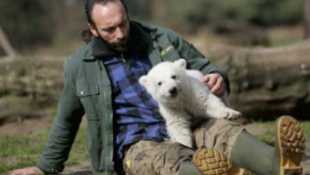 Tragikusan hirtelen elhunyt Knut