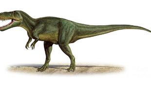 Dinoszauruszfészekre bukkantak Portugáliában