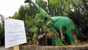 Dinoszaurusz ingyen elvihető!