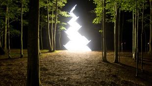 Isteni fény gyúlt az erdőben