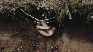 Lefotózták az erdőben született embert