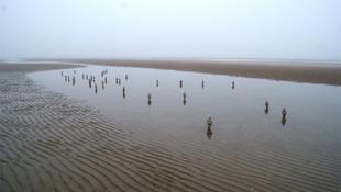 Rejtély, hogyan fulladtak homokba a városlakók
