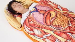 Hálózsák készült a belső szervekből