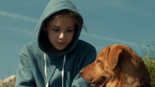 Mundruczó Kornél filmje is esélyes az Európai Filmdíjra