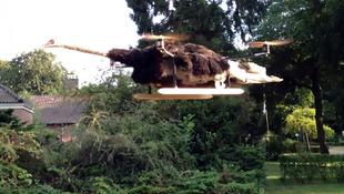 Elkészült a strucckopter