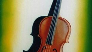 Többmilliós hegedűket loptak egy bécsi zenésztől